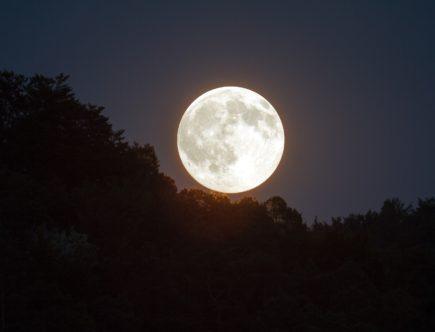 満月の話PIC